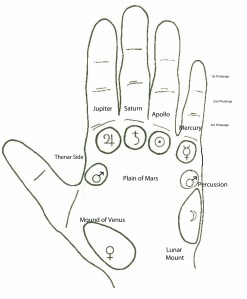 4-Palmistry Terms