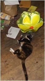 Peri and Ballon 3