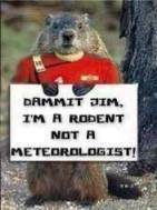 trek groundhog