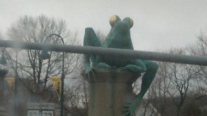 frog bridge