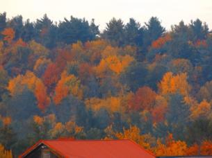 ed-huot-fall-pic
